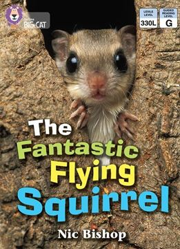 Resim  COLLINS BIG CAT :  BLUE BAND 4 THE FANTASTIC FLYING SQUIRREL